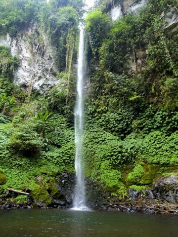 waterfall in bali 768x1024 640x480 - Eine Reise mit Freunden