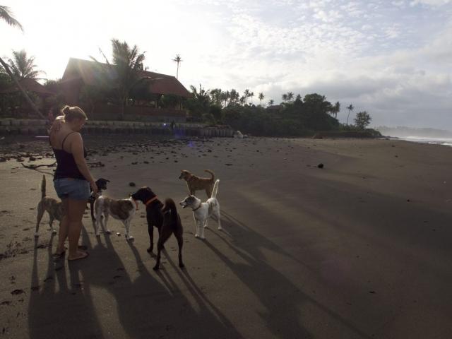 P5270071 1024x768 640x480 - Good bye Bali
